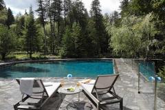 Large Pool Transformation