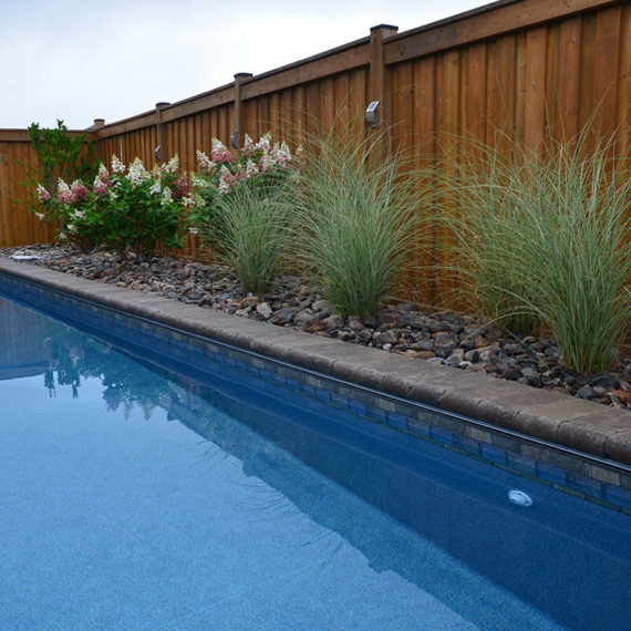 pool bordered with stone, long grass, and hydrangea