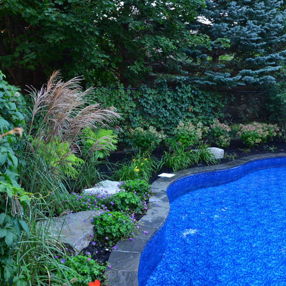 blue pool with landscaping