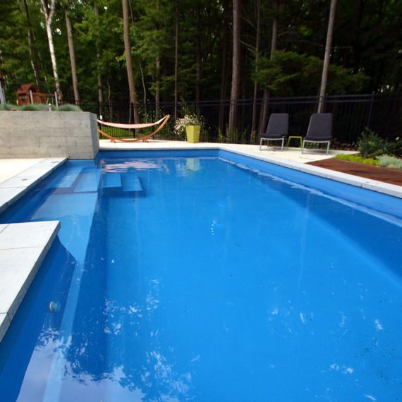 outdoor pool bordering wooded area
